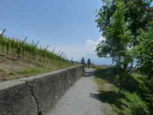 Direction Savuit