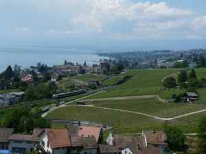 Tour Bertholo et train
